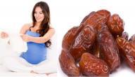 فوائد التمر للحامل في الشهور الأولى
