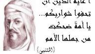 أبو الطيب المتنبي الشاعر العباسي