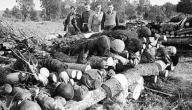 كم بلغ عدد ضحايا الحرب العالمية الثانية
