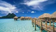 جزيرة غوا