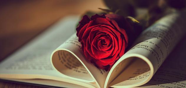 تعبير عن الحب والعشق