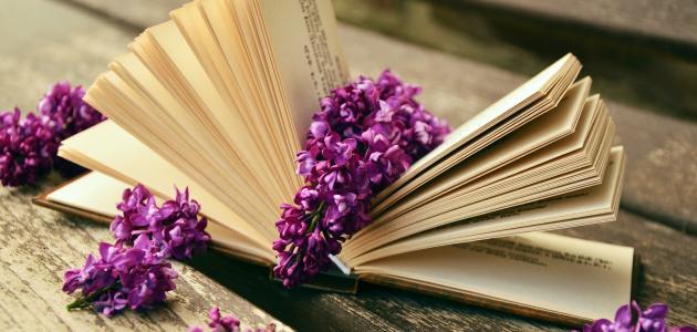 أقوال عن القراءة
