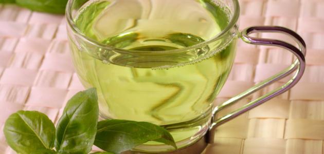 الشاي الأخضر للتنحيف