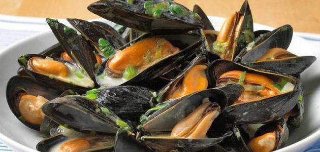 ما الذي يؤكل من الأصداف البحرية