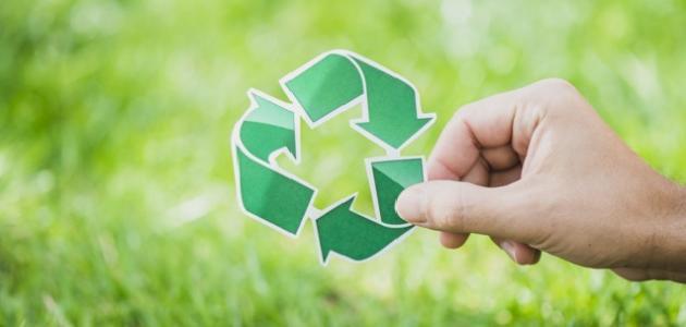 مشروع عن البيئة