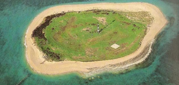 جزيرة وربة