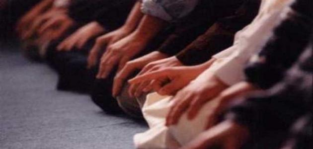 عدد ركعات صلاة القيام في رمضان