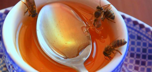 مقالة علمية عن العسل