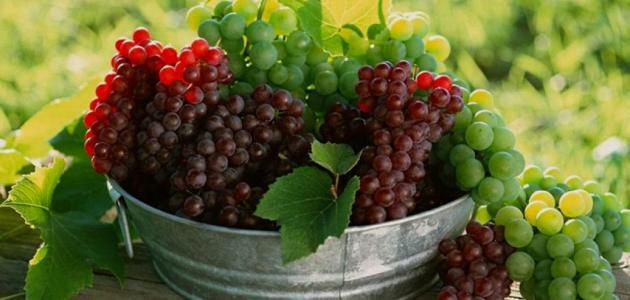 فوائد العنب المجفف