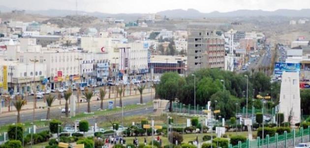 مدينة خميس مشيط