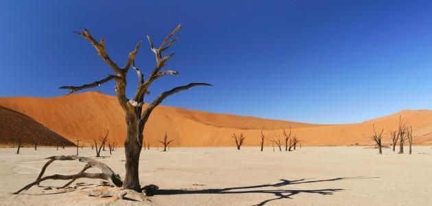 مفهوم الجفاف