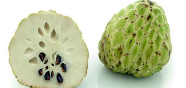 فاكهة القشطة والرجيم
