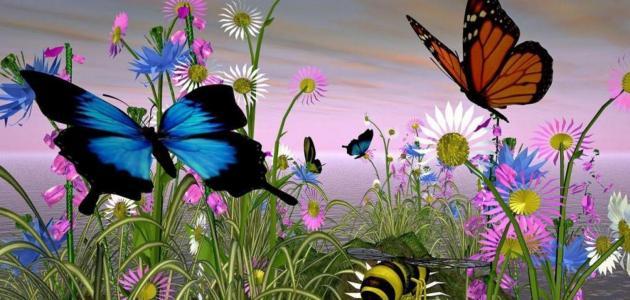 موضوع عن فصل الربيع وجماله