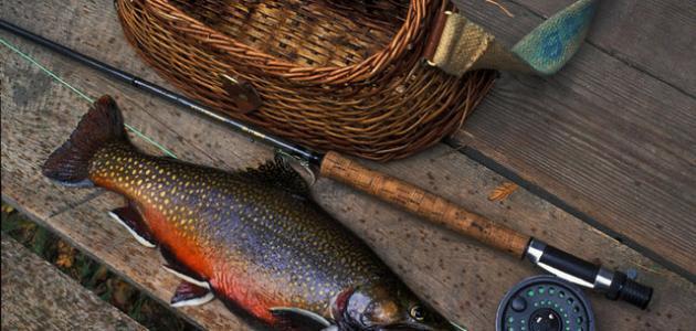 أدوات الصيد