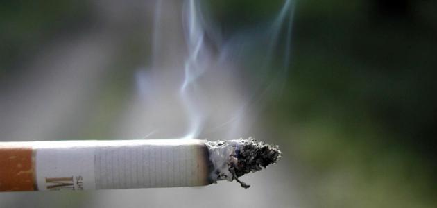 هل التدخين ينقص الوزن