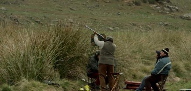 صيد الحجل في إسبانيا