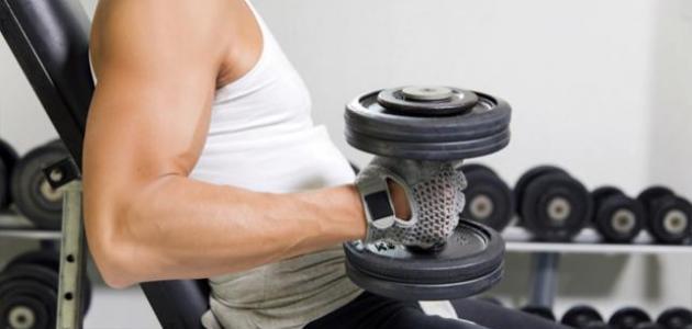 زيادة حجم العضلات