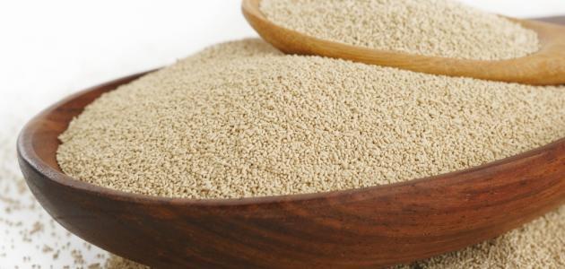 طريقة شرب خميرة الخبز لزيادة الوزن