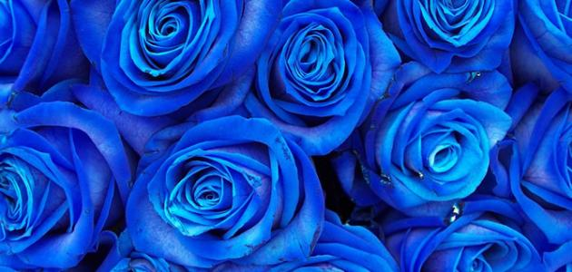دلالات اللون الأزرق