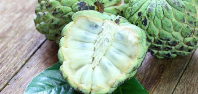 فاكهة القشطة للحامل