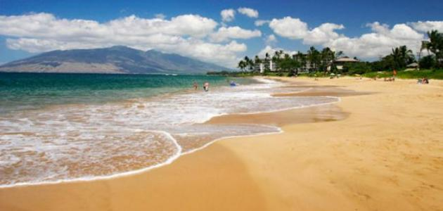 ما سبب وجود رمال ناعمة على شواطئ البحار