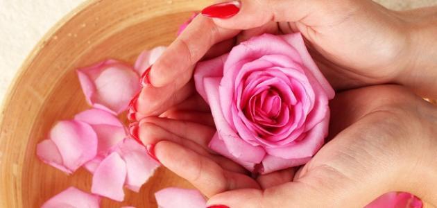 فوائد ومضار ماء الورد للوجه