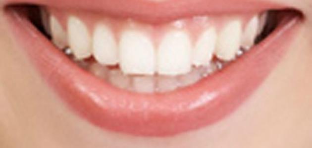 ما عدد أسنان الإنسان