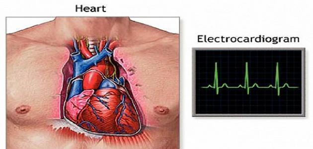 عدد نبضات القلب السليم في الدقيقة