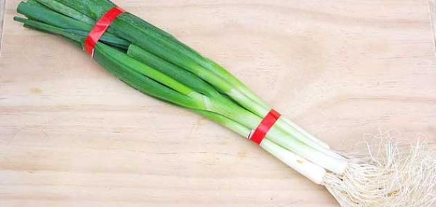 فوائد البصل الأخضر للحامل