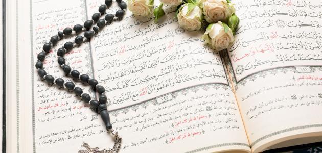 عدد السور المكية والمدنية في القرآن الكريم