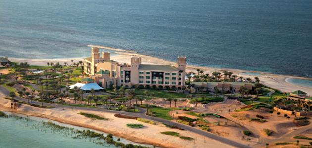 جزيرة دلما في أبو ظبي