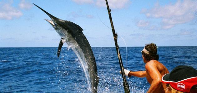 طريقة صيد الأسماك