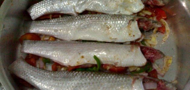 عمل السمك السنجاري