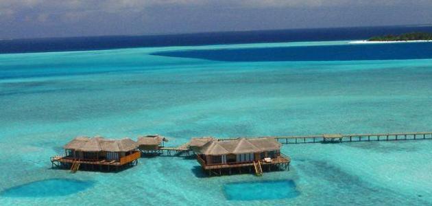 جزيرة الواق واق