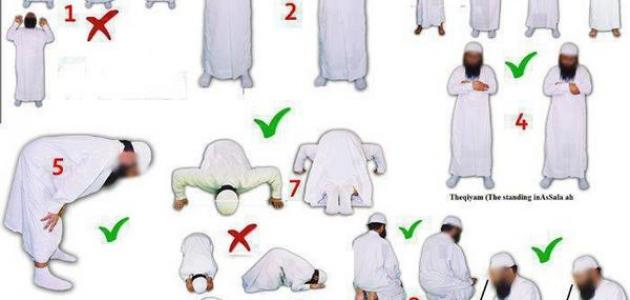 كيفية تعلم الصلاة