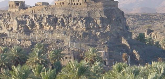 مدينة خيبر