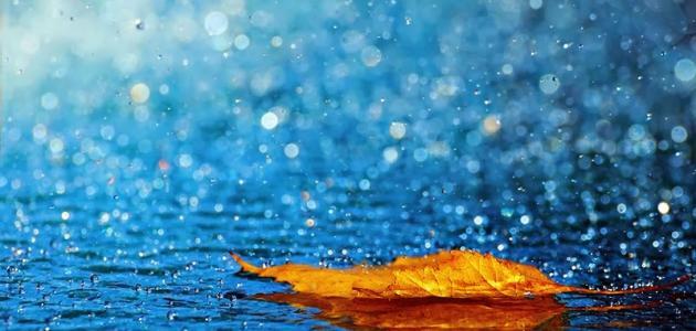 فوائد المطر الحمضي