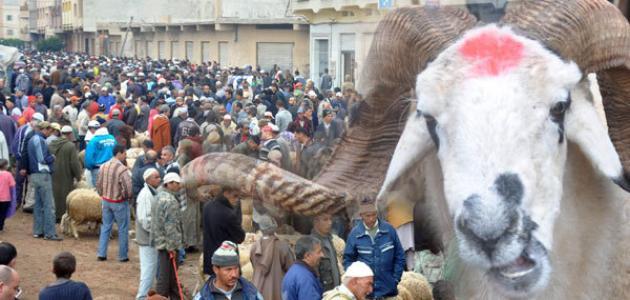 عيد الأضحى بالمغرب