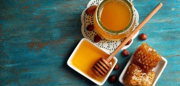 فوائد عسل السدر الأصلي