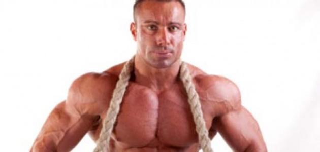 طريقة تضخيم العضلات
