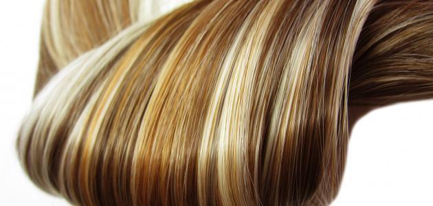 طريقة تنعيم الشعر الجاف