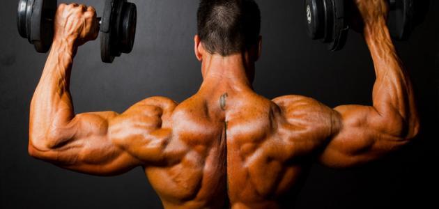 تمارين تنشيف العضلات