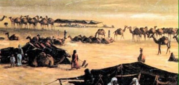 الفرق بين الحضر والبدو