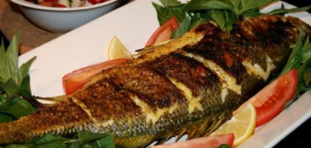 أغلى أنواع السمك للأكل