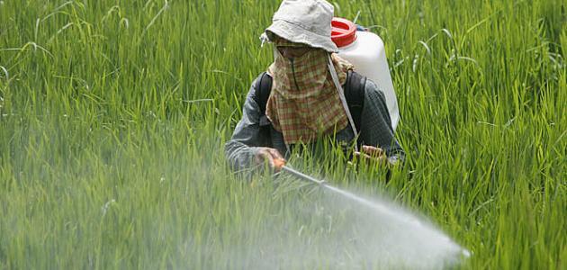 أضرار المبيدات الحشرية