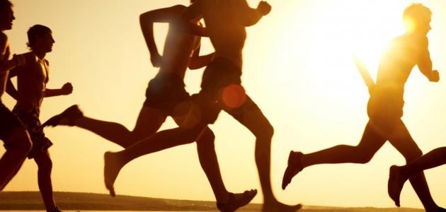 بحث حول وقاية الجهاز الهضمي