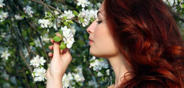 طريقة صبغ الشعر بالحناء باللون الأحمر