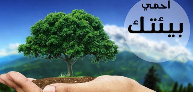 الإسلام وحماية البيئة