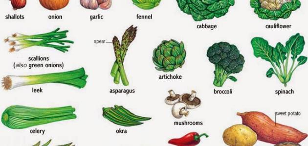 الأغذية التي تساعد على حرق الدهون