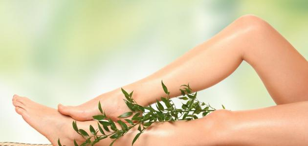 طريقة استخدام نبات السعد